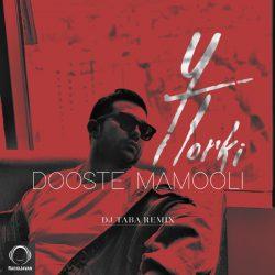 Yasin Torki – Dooste Mamoli (Dj Taba Remix)